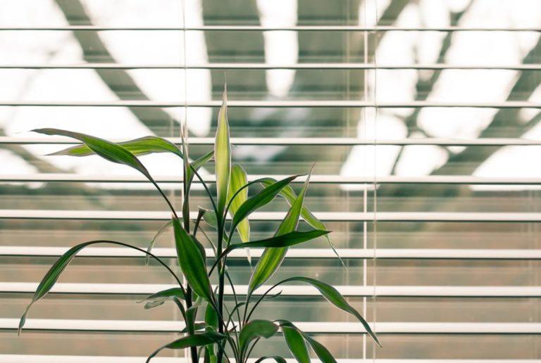 Markiza balkonowa, a więc jak zapewnić sobie cień w takim miejscu