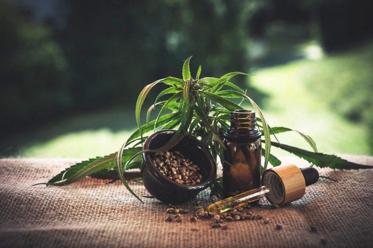 Jaki sprzęt do hodowli marihuany warto zakupić?